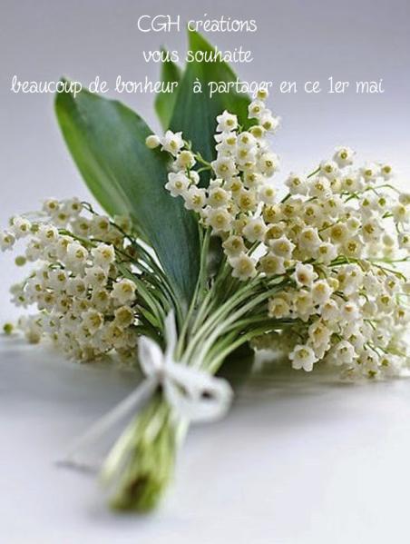 Muguet rose fleur sauvage joyeuse fe te rare fleur bouquet de fleur joie amitie muguet lily of the valley